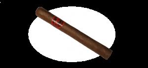 Room 101 Namakubi Tiburon cigar
