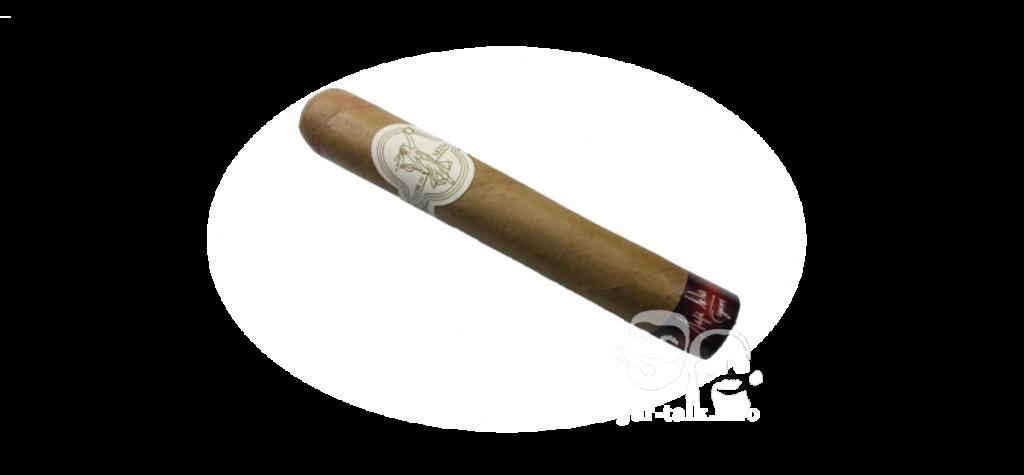 Maya Selva - Flor de Selva robusto cigar